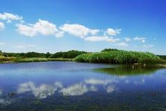 De rivier van Veleka Stock Foto's
