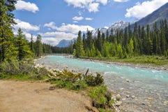 De rivier van vermiljoenen bij Nationaal Park Kootenay Royalty-vrije Stock Fotografie
