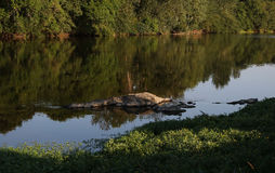 De rivier van Wenen, Mening van Heilige Germain de Confolens, Frankrijk royalty-vrije stock foto's