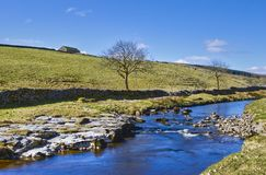 De rivier van Wharfe Royalty-vrije Stock Foto