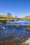 De rivier van Wharfe Royalty-vrije Stock Afbeeldingen