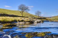 De rivier van Wharfe Stock Foto's