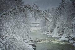 de rivier van de de wintersneeuw van het de winterlandschap Stock Foto