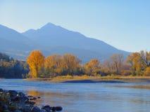 De Rivier van Yellowstone stock foto's