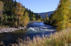 De rivier van Yellowstone Stock Afbeelding