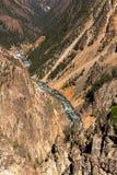 De Rivier van Yellowstone, Wyoming Stock Afbeelding