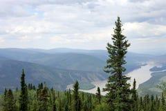 De Rivier van Yukon Stock Afbeeldingen