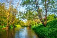 De rivier van de zomer Landschap van rivieroever in groene boslandschapsrivier Mooie riverbank stock foto's