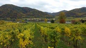De rivier Wachau Oostenrijk van Donau in de herfst Royalty-vrije Stock Fotografie