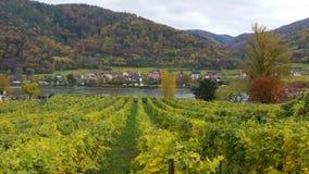 De rivier Wachau Oostenrijk van Donau in de herfst Stock Afbeeldingen