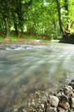 De rivier weet het Stock Fotografie
