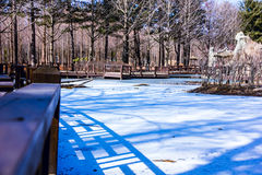De rivier werd ijs stock foto