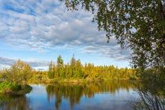 De rivier Yagenetta van het de herfstlandschap Royalty-vrije Stock Foto