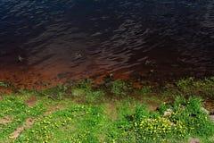 De rivierbank Royalty-vrije Stock Foto