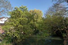 De rivierbank van Marne in land ÃŽle-DE-Frankrijk Stock Afbeelding
