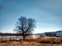 De rivierboom van Missouri op bank van Atchison Kansas Royalty-vrije Stock Foto's