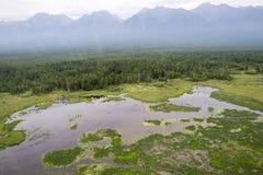 De rivieren en de meren van Oostelijk Siberië van de hoogte  stock foto
