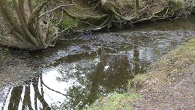 De rivieren en de Stromenwateren stellen nog diep 6 in werking royalty-vrije stock fotografie
