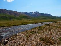 De rivieren van plateau Ukok, berg Altai stock foto's
