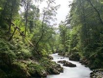 De rivieren van vintgard stock afbeelding