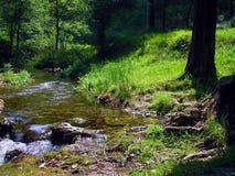 De rivierenstromen in u Royalty-vrije Stock Fotografie