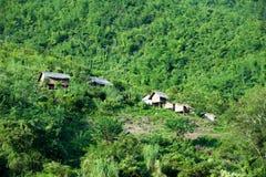 De rivierkant van Laos, Mekong Plattelandshuisjes in groen bos Stock Afbeeldingen