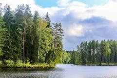 De rivierkrommingen door de bossen royalty-vrije stock foto's