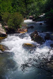 De rivierlandschap van de canion Stock Foto