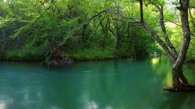 De rivierlandschap van de zomer Royalty-vrije Stock Afbeeldingen