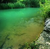 De rivierlandschap van de zomer Stock Fotografie