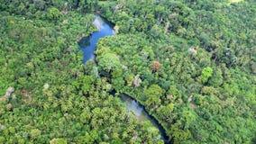 De Rivierlandschap van Papoea-Nieuw-Guinea stock afbeelding
