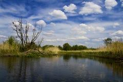 De rivierlandschap van Ros Stock Foto
