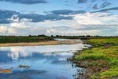 De rivierlandschap van Shannon Stock Fotografie