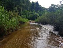De riviermening bij de toevlucht Namkat Yorlapa, Oudomxay, Laos royalty-vrije stock foto's