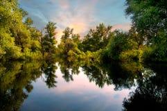 Danube river marshes Royalty-vrije Stock Afbeeldingen