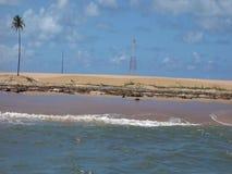 De riviermonding van San Francisco, alagoas, Brazilië stock video
