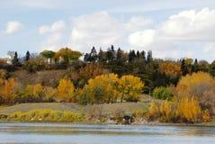De rivieroeverscène van de herfst in Edmonton Stock Afbeelding