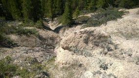 De rivierongeluksboden van de boogvallei banff stock afbeelding