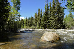 De Rivierscène van Colorado royalty-vrije stock afbeeldingen
