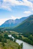 De rivierstromen tussen de bergen Stock Fotografie