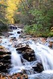 De rivierstroom van de cascade met dalingsgebladerte royalty-vrije stock afbeeldingen