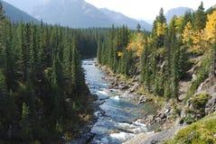 De riviervallei van de herfst Stock Fotografie