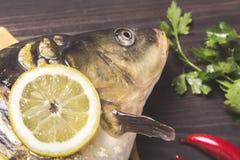 De riviervissen van de spiegelkarper met citroen, kruiden en peper op donkere houten lijst Royalty-vrije Stock Afbeelding
