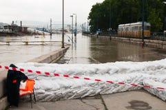 De Riviervloed 2013, Boedapest, Hongarije van Donau Royalty-vrije Stock Foto
