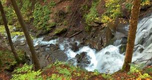 De rivierwaterval van de berg in wild Karpatisch bos Stock Foto's