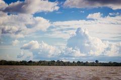 De rivierwildernis van Amazonië met verbazende hemel en wolken Stock Afbeelding