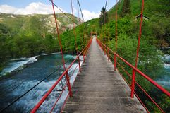 De rivierwildernis van de brug Stock Foto's