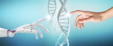 De robotachtige en menselijke ketting van DNA van handaanrakingen Stock Fotografie