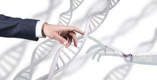 De robotachtige en menselijke ketting van DNA van handaanrakingen het 3d teruggeven Royalty-vrije Stock Afbeelding