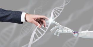 De robotachtige en menselijke ketting van DNA van handaanrakingen het 3d teruggeven Stock Fotografie